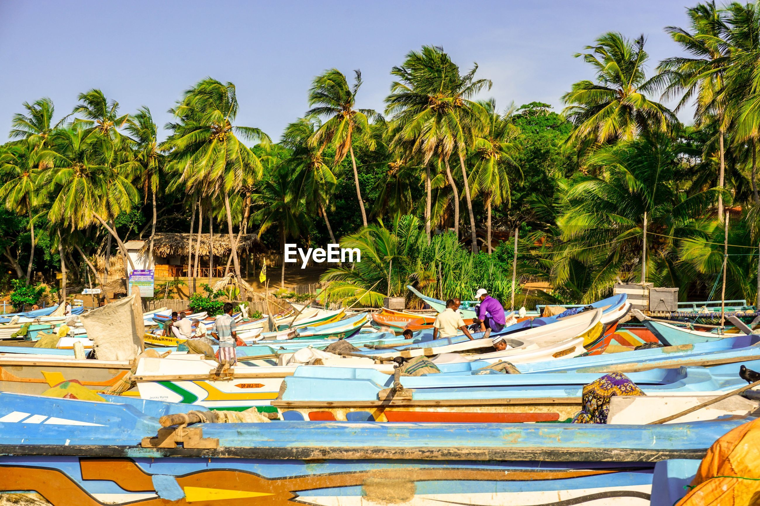 Boats moored against palm trees