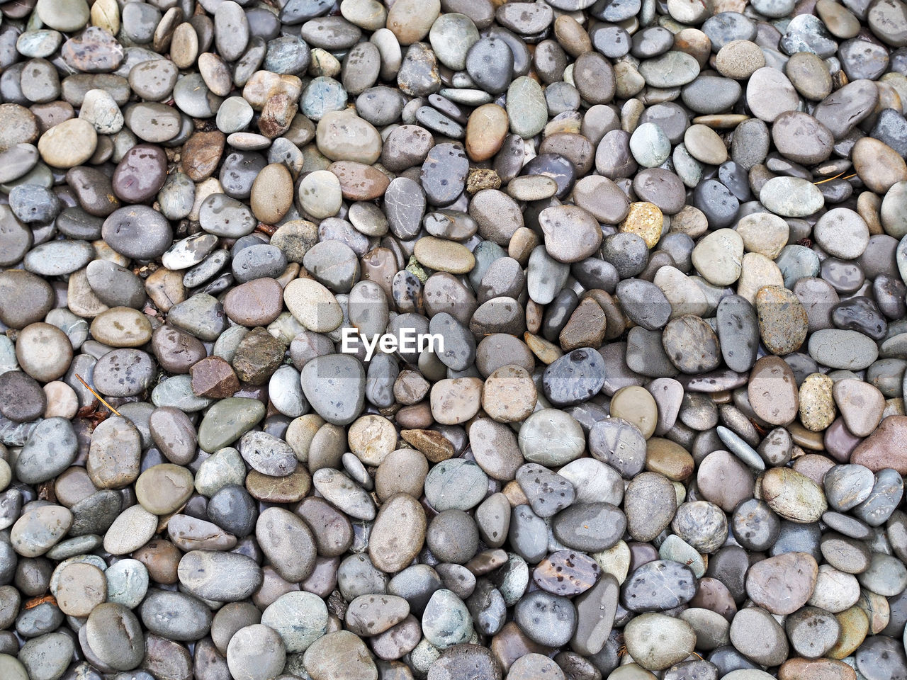 full frame, large group of objects, abundance, backgrounds, pebble, rock, solid, nature, no people, directly above, stone, high angle view, stone - object, day, outdoors, close-up, variation, beach, food and drink, rock - object