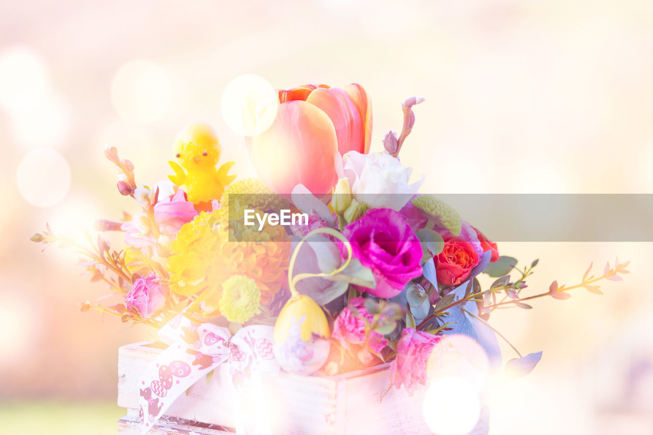 flower, flowering plant, plant, beauty in nature, freshness, fragility, vulnerability, nature, petal, flower head, pink color, inflorescence, close-up, focus on foreground, no people, event, celebration, wedding, selective focus, multi colored, outdoors, flower arrangement, bouquet, bunch of flowers