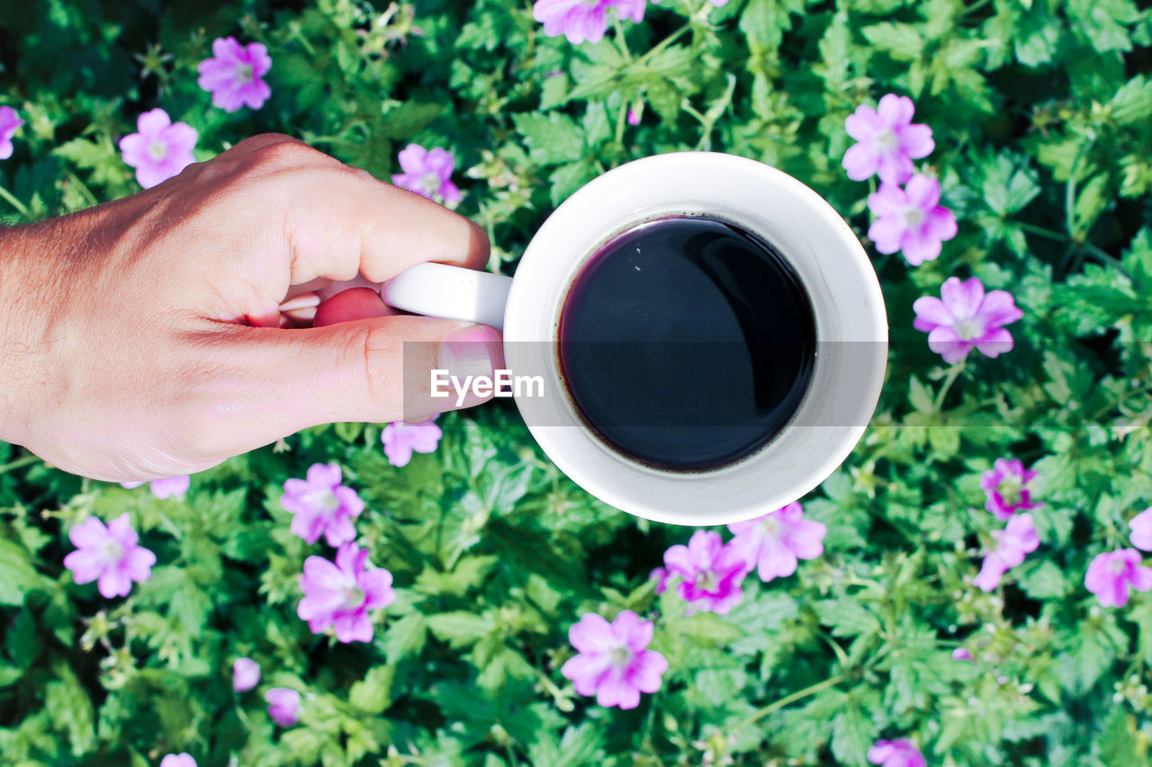 Cropped Hand Holding Coffee Cup Over Flowers And Plants