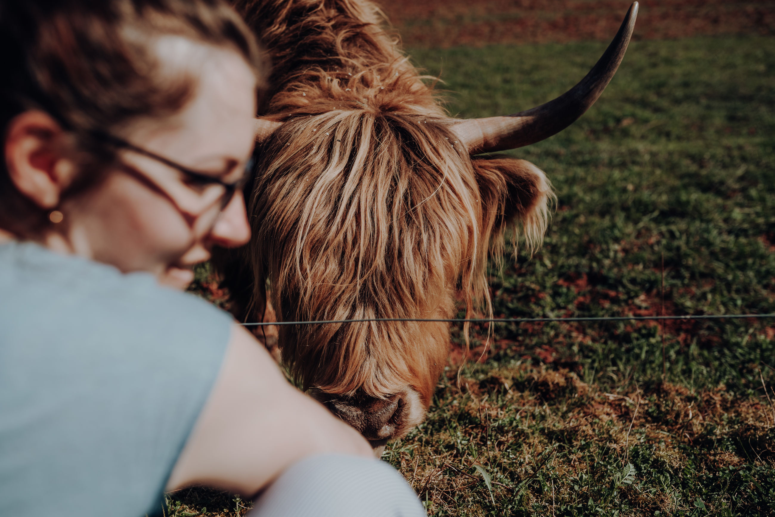 Woman by cow on field