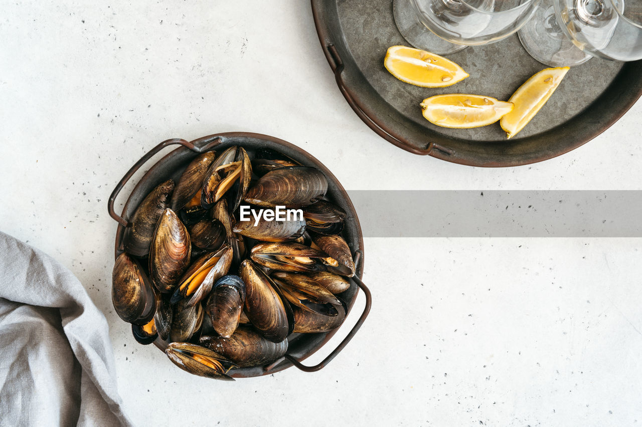 Mussel shells on a textured white background.
