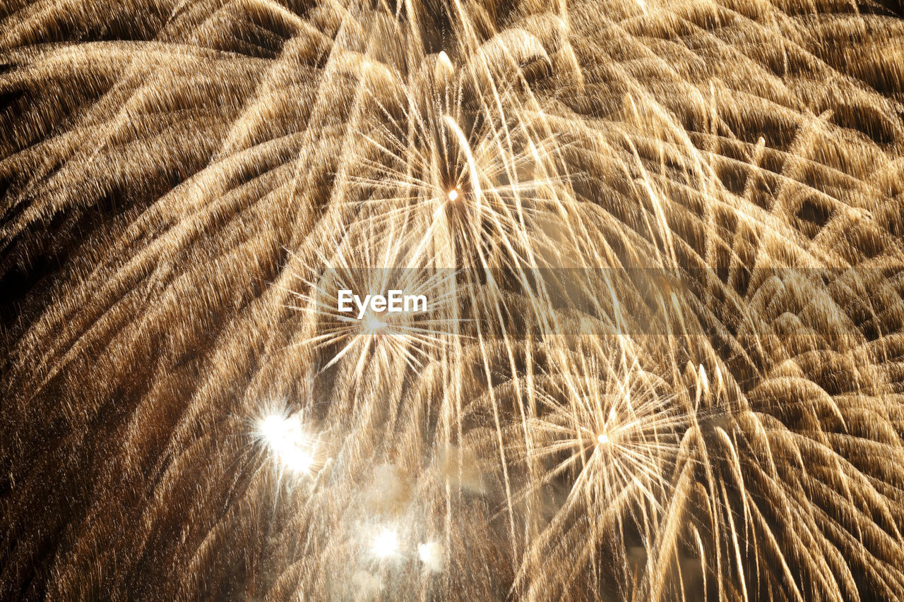 illuminated, backgrounds, motion, no people, full frame, night, close-up, nature, softness, celebration, plant, pattern, dandelion, outdoors, blurred motion, fragility, event, abstract, arts culture and entertainment, firework