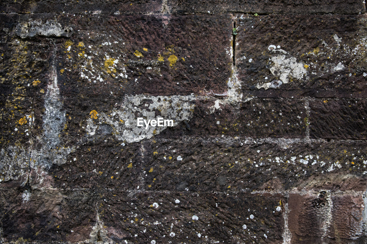 wall - building feature, architecture, no people, built structure, textured, wall, full frame, weathered, day, water, old, outdoors, pattern, nature, backgrounds, damaged, dirty, close-up, building exterior, brick, concrete, deterioration, stone wall