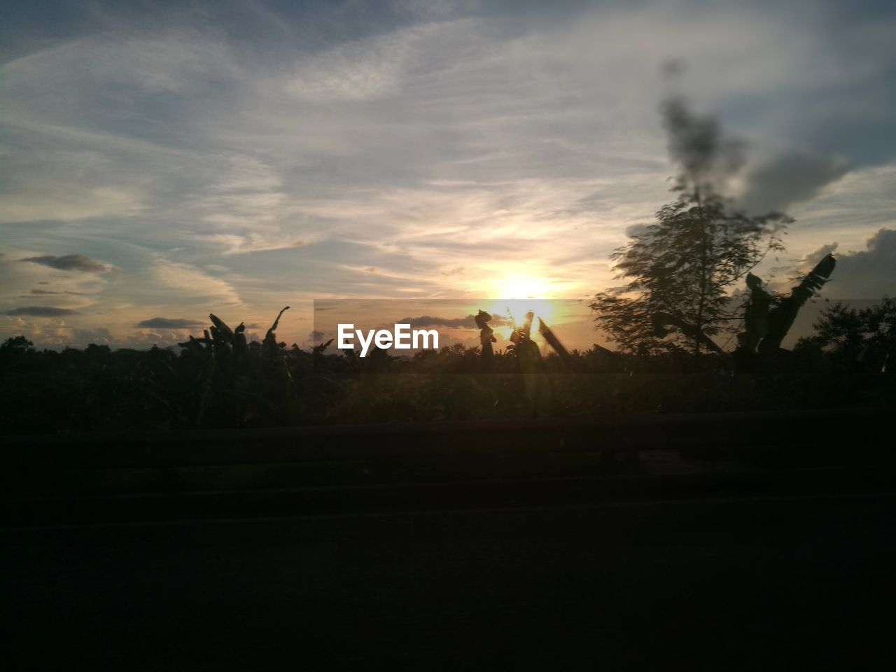 sunset, sun, sky, silhouette, nature, tree, no people, beauty in nature, landscape, scenics, tranquility, tranquil scene, growth, outdoors, day