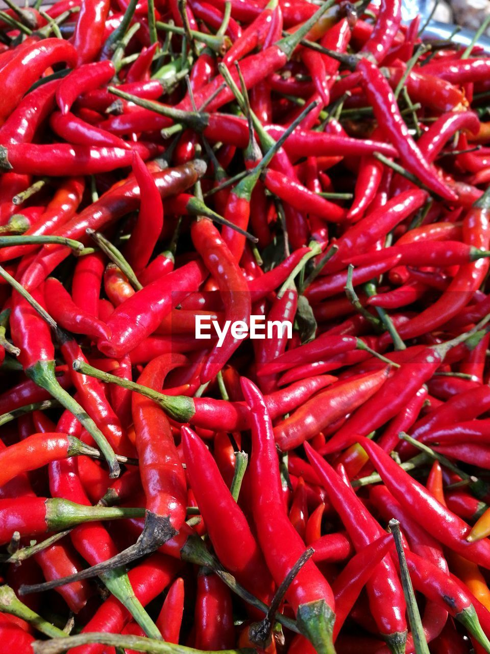 red, spice, abundance, pepper, food and drink, food, full frame, freshness, no people, backgrounds, market, outdoors, day, close-up, nature