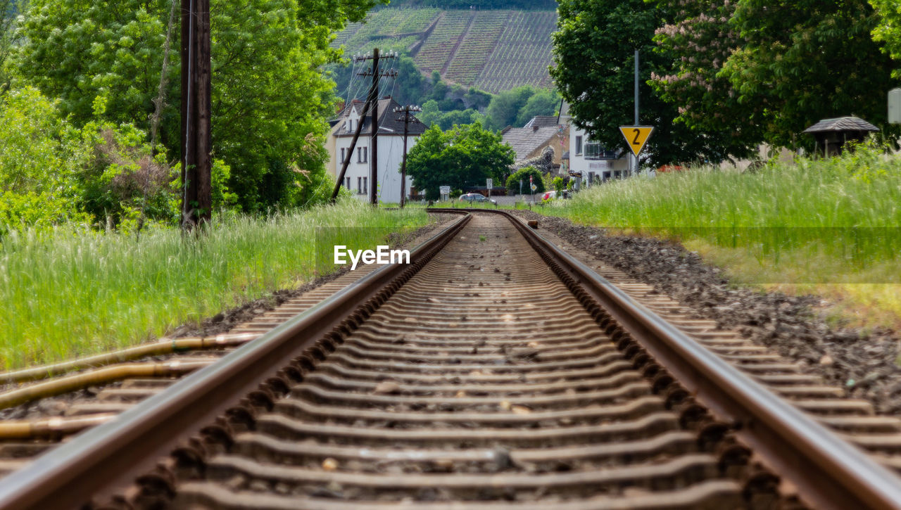 railroad track, track, rail transportation, plant, transportation, direction, the way forward, tree, diminishing perspective, no people, nature, day, vanishing point, travel, architecture, mode of transportation, outdoors, grass, public transportation, metal, gravel, surface level, parallel