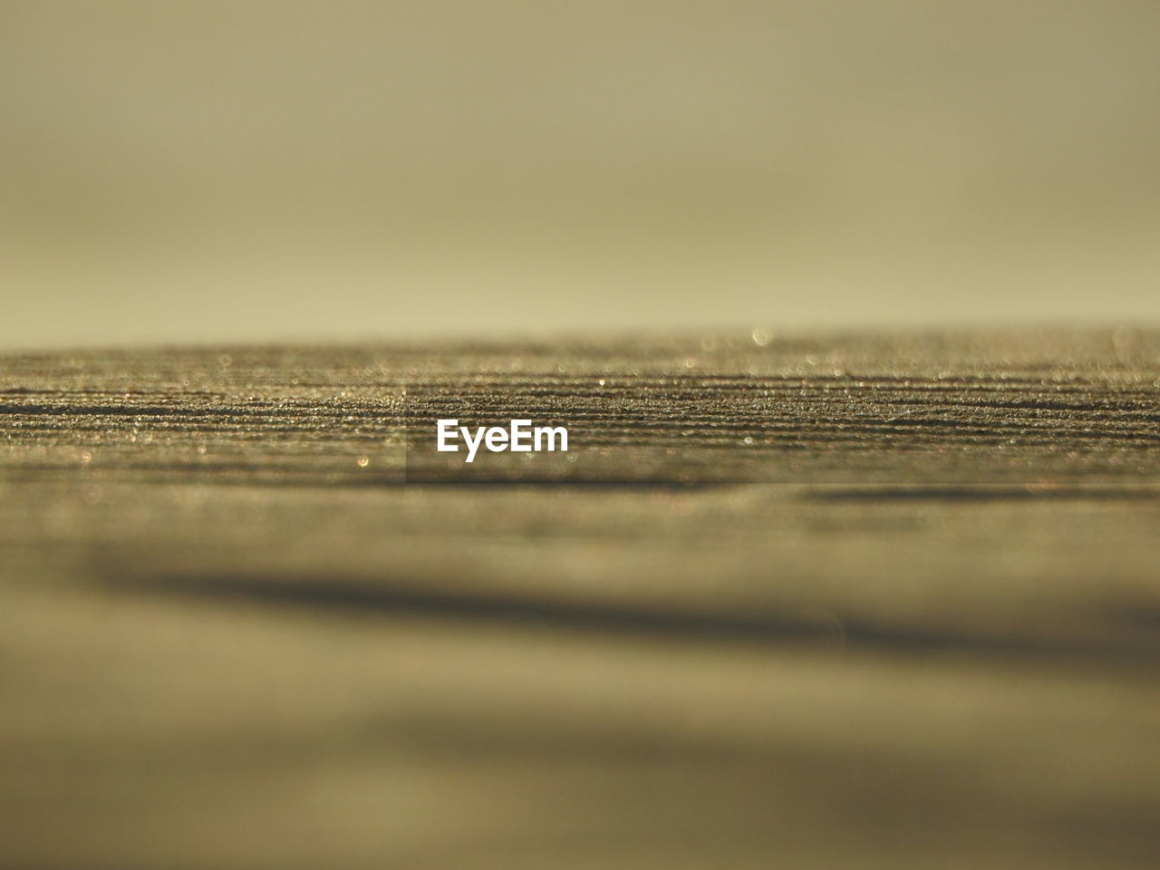 selective focus, close-up, textured, no people, wood - material, surface level, backgrounds, nature, day, outdoors