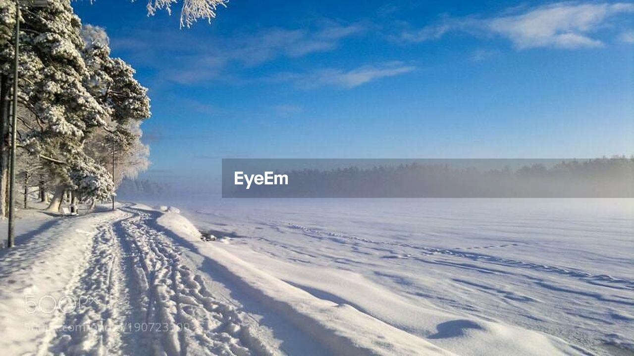 snow, cold temperature, winter, nature, landscape, outdoors, pine tree, scenics, beauty in nature, weather, cloud - sky, mountain, sky, tree, day, frozen, blue, sunlight, tranquil scene, no people, forest, snowing, rural scene