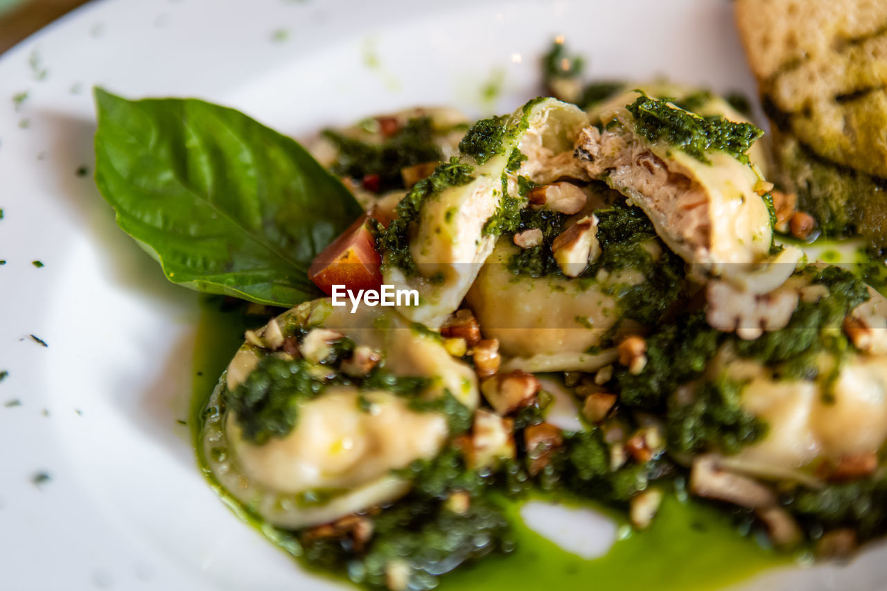 food and drink, food, freshness, ready-to-eat, plate, vegetable, healthy eating, selective focus, close-up, serving size, wellbeing, indoors, still life, no people, green color, green, broccoli, high angle view, indulgence, salad, vegetarian food, temptation, crockery