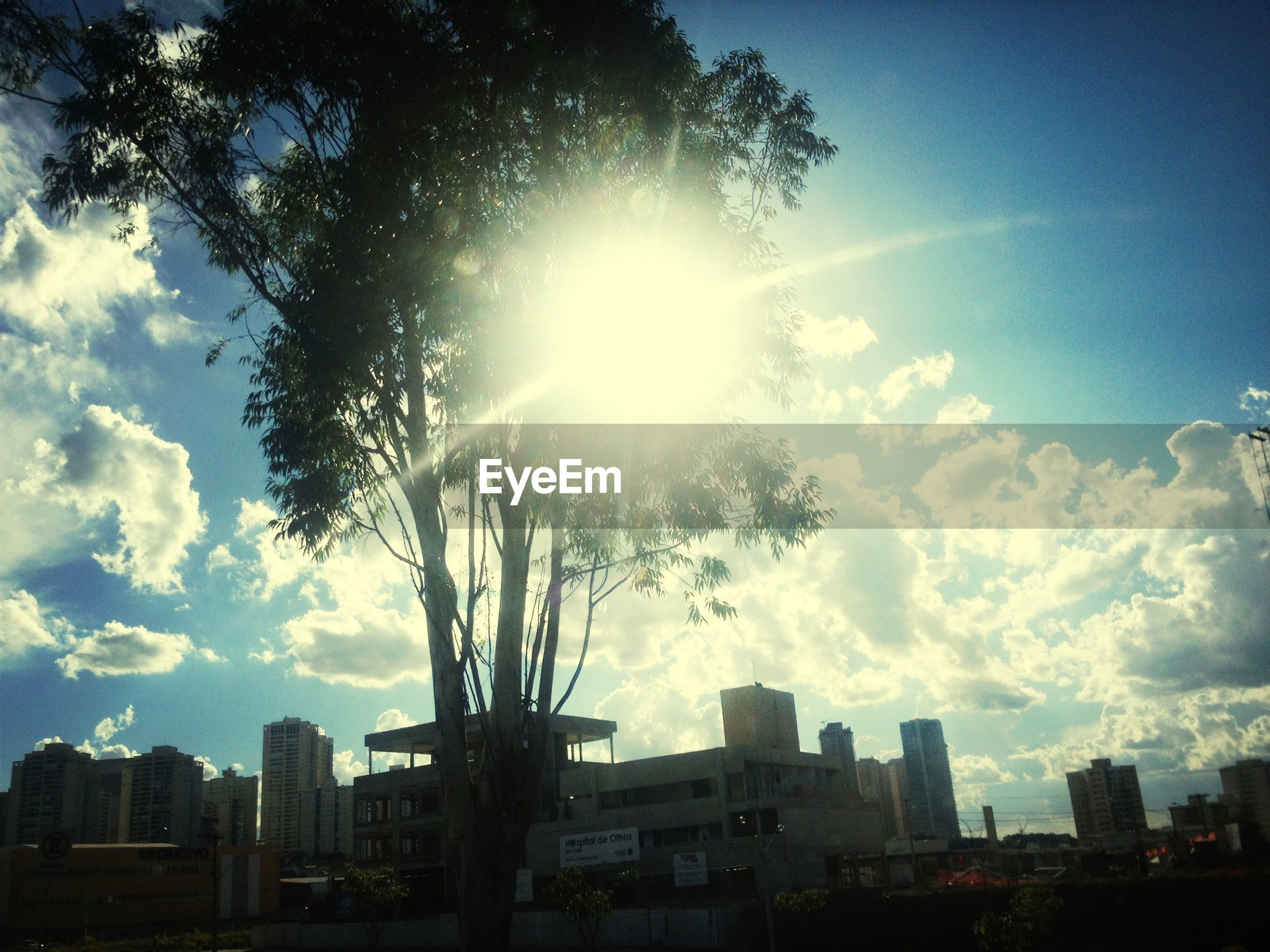 building exterior, architecture, sun, built structure, sunbeam, sunlight, sky, city, tree, silhouette, lens flare, low angle view, cloud - sky, sunny, skyscraper, residential building, building, cloud, outdoors, no people
