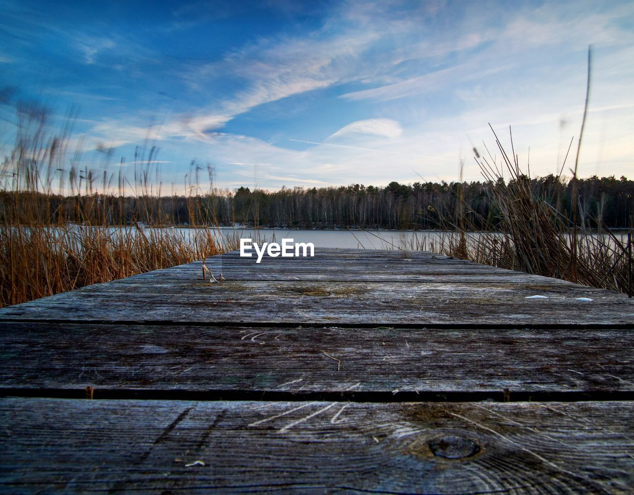 sky, wood - material, no people, cloud - sky, tranquility, tranquil scene, plant, nature, beauty in nature, scenics - nature, grass, land, non-urban scene, day, water, field, boardwalk, direction, outdoors