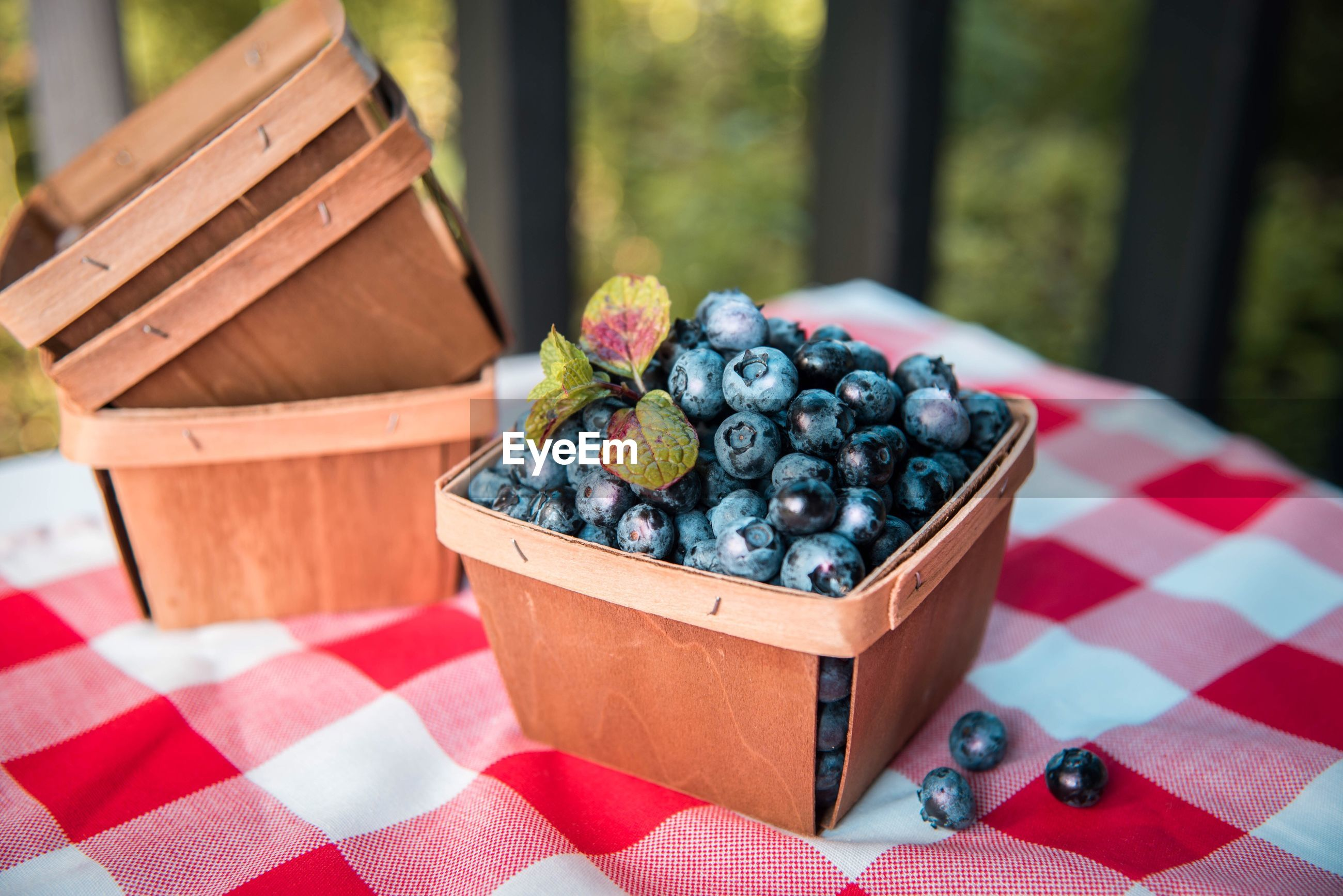 Close-up of blueberries in container on table