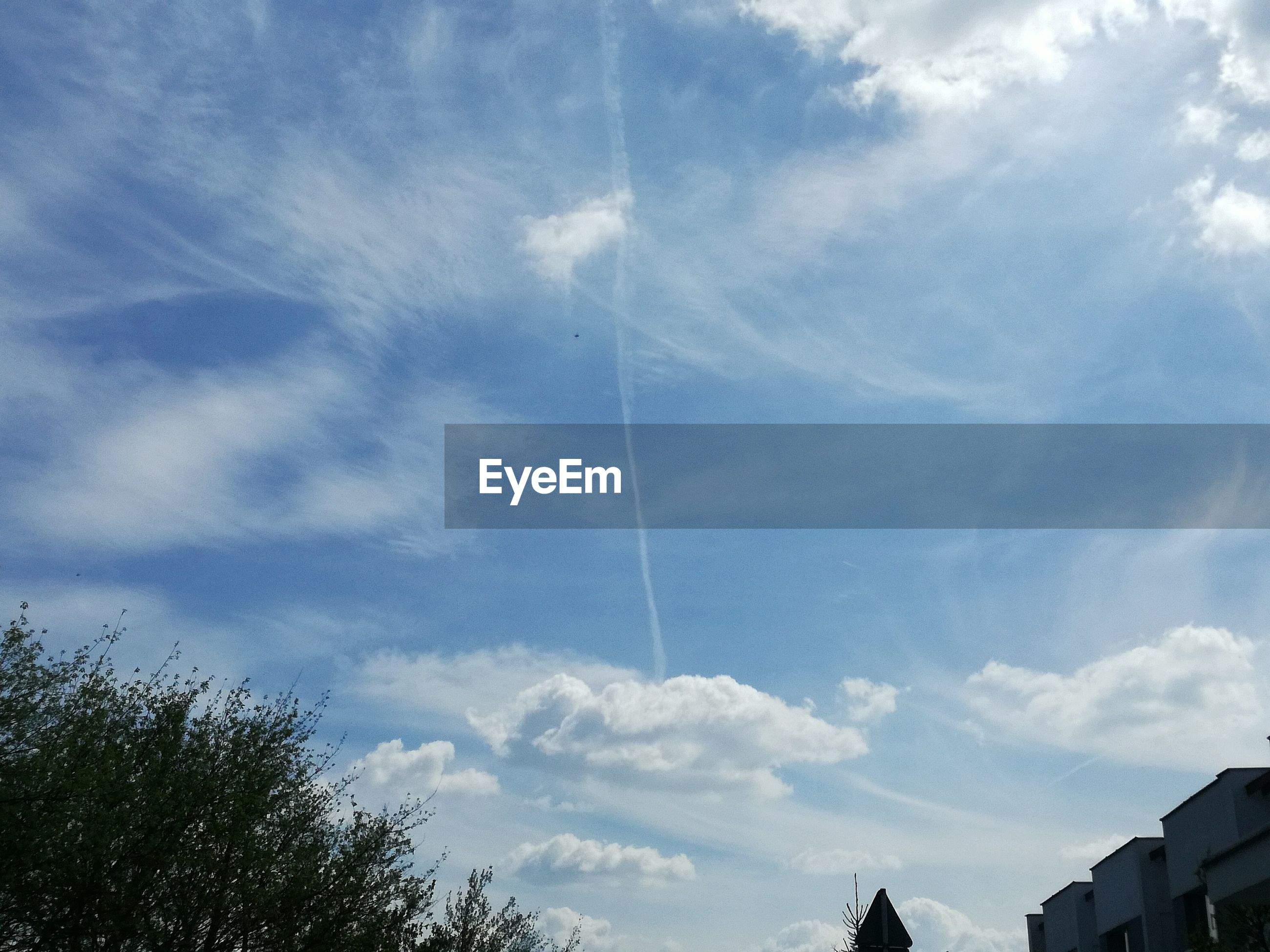 vapor trail, contrail, low angle view, sky, no people, day, blue, beauty in nature, outdoors, nature, tree
