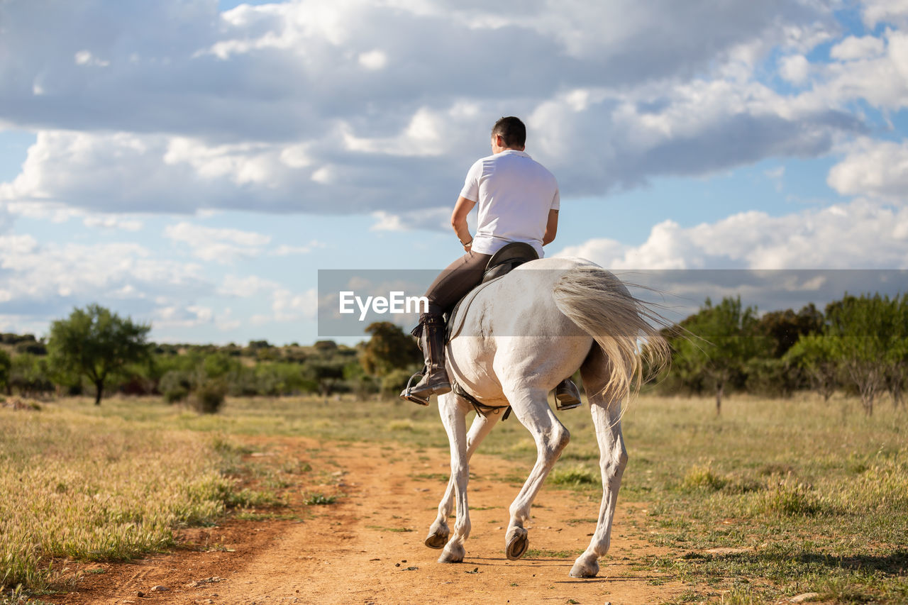 Rear view of man riding horse on land against sky