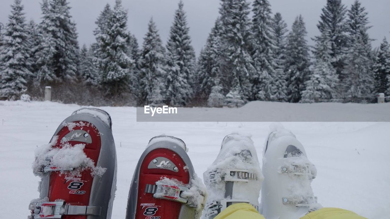 Low section of friends wearing snow boots on field against trees