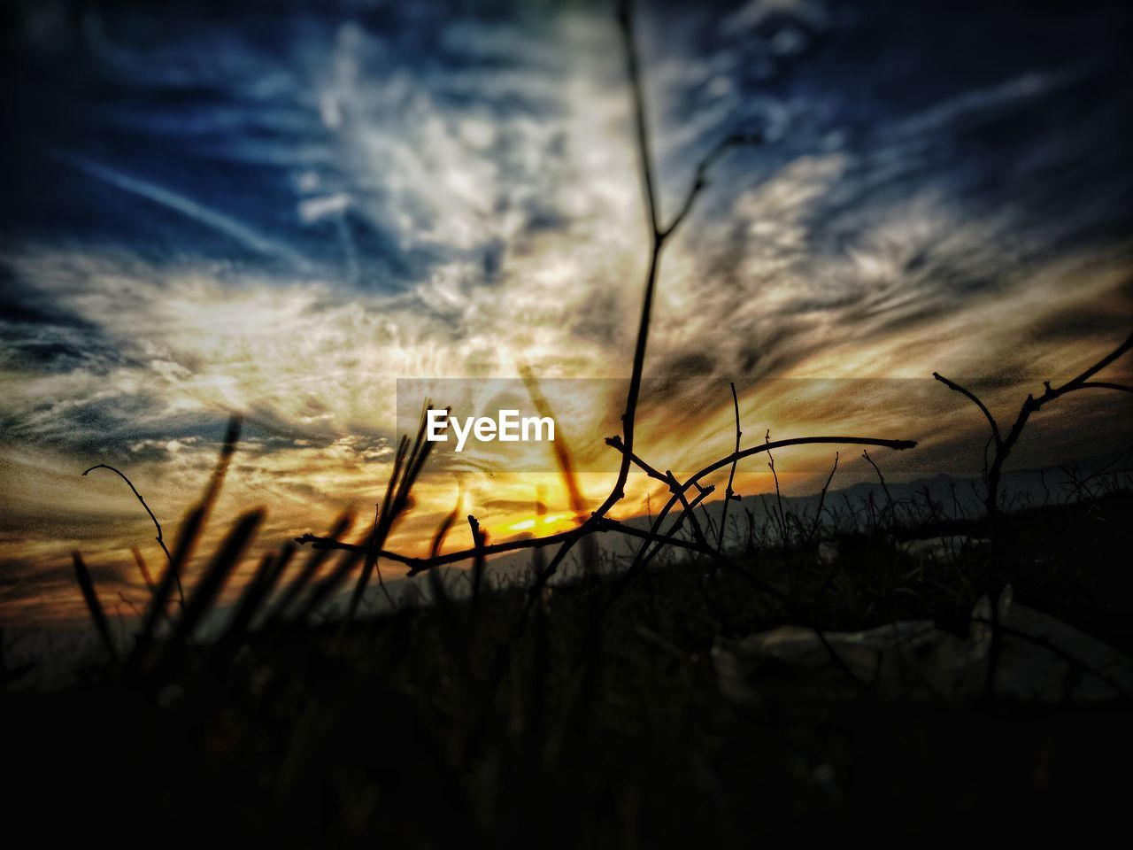 sunset, nature, sky, beauty in nature, scenics, sun, silhouette, outdoors, no people, field, tranquil scene, growth, plant, tranquility, cloud - sky, sunlight, grass, rural scene, close-up, day