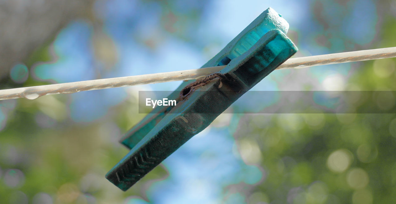 focus on foreground, close-up, day, no people, clothespin, metal, clothesline, outdoors, nature, selective focus, wood - material, rope, green color, laundry, hanging, tree, clothing, still life, plastic, creativity, stick - plant part