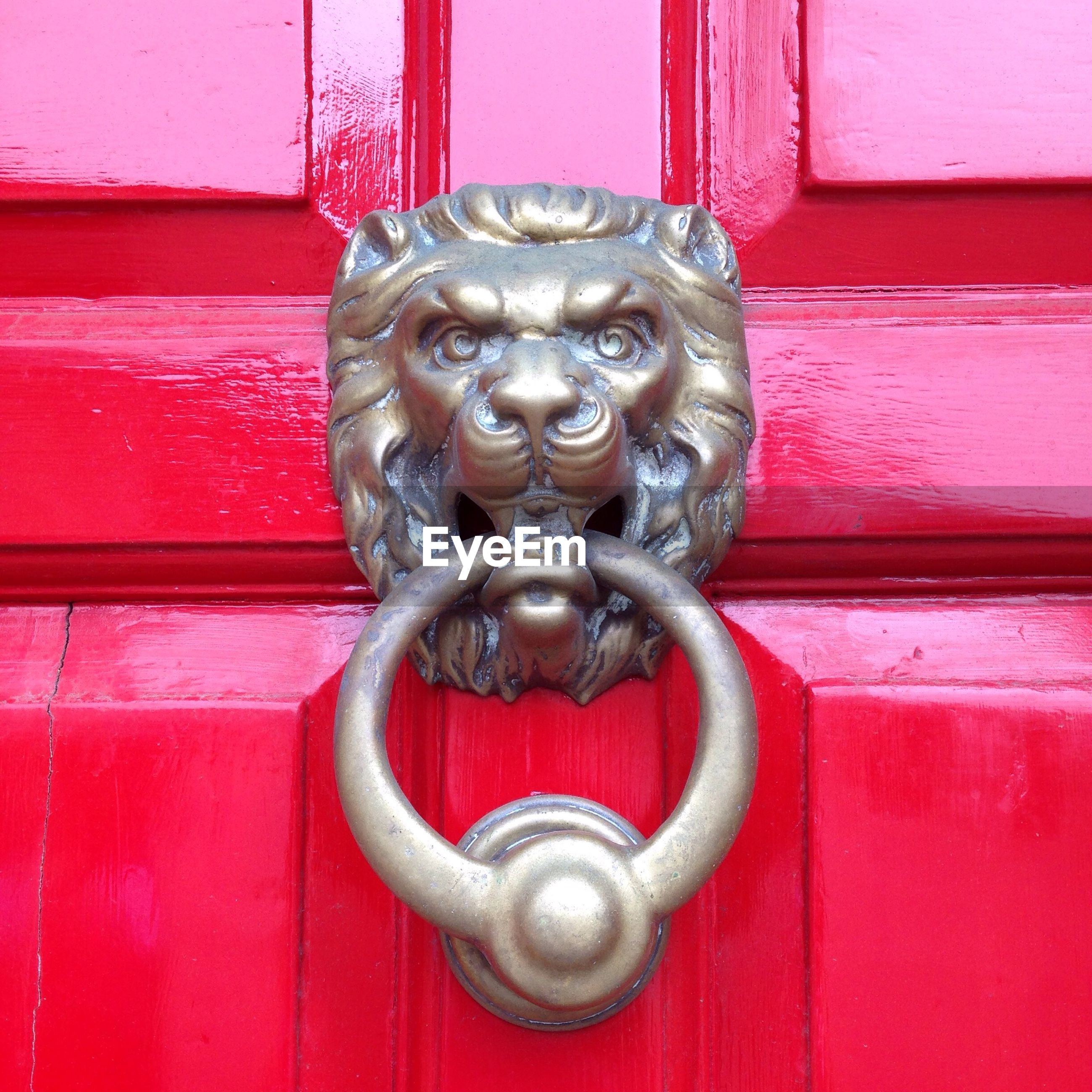 Close-up of lion knocker
