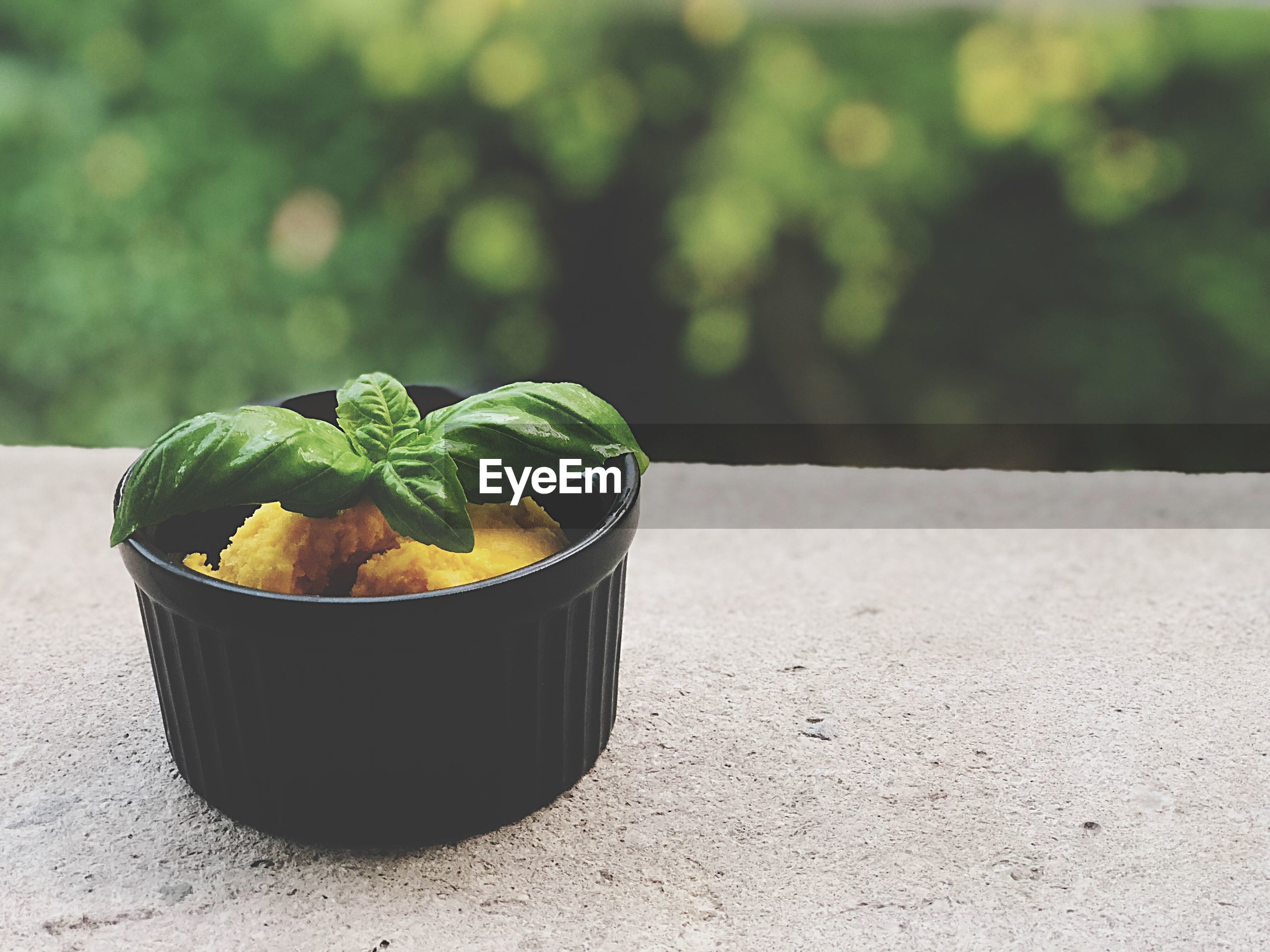Close-up of food in bowl on retaining wall outdoors
