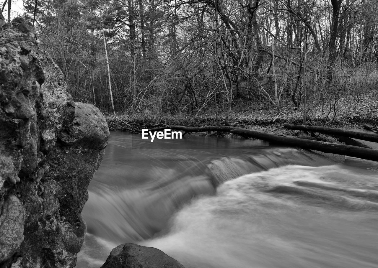 water, tree, nature, plant, beauty in nature, flowing water, forest, river, motion, scenics - nature, long exposure, day, no people, flowing, land, rock, tranquility, bare tree, environment, outdoors, stream - flowing water, power in nature