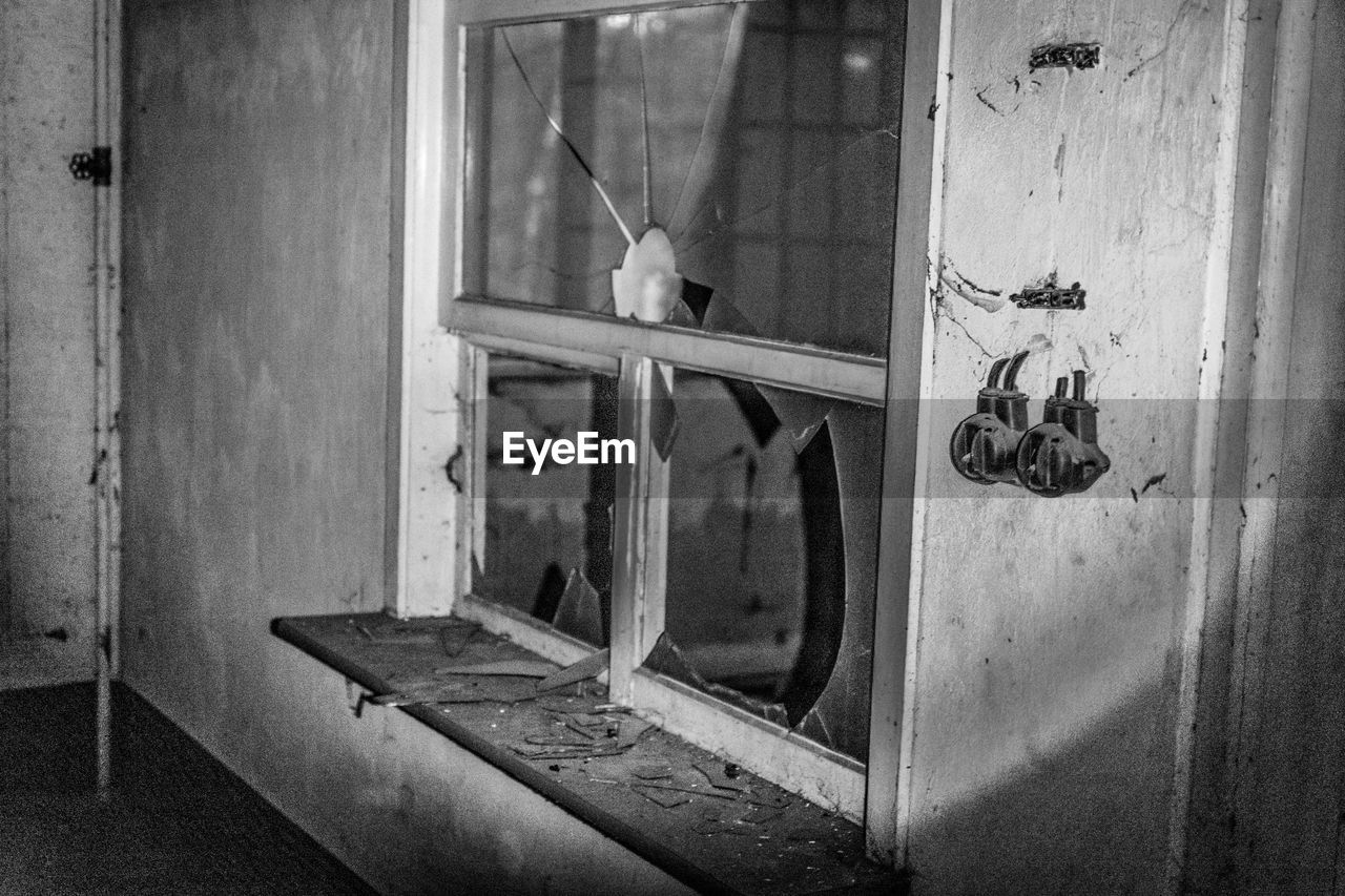 window, day, indoors, no people, one animal, hanging, animal themes, architecture, close-up, bird, mammal