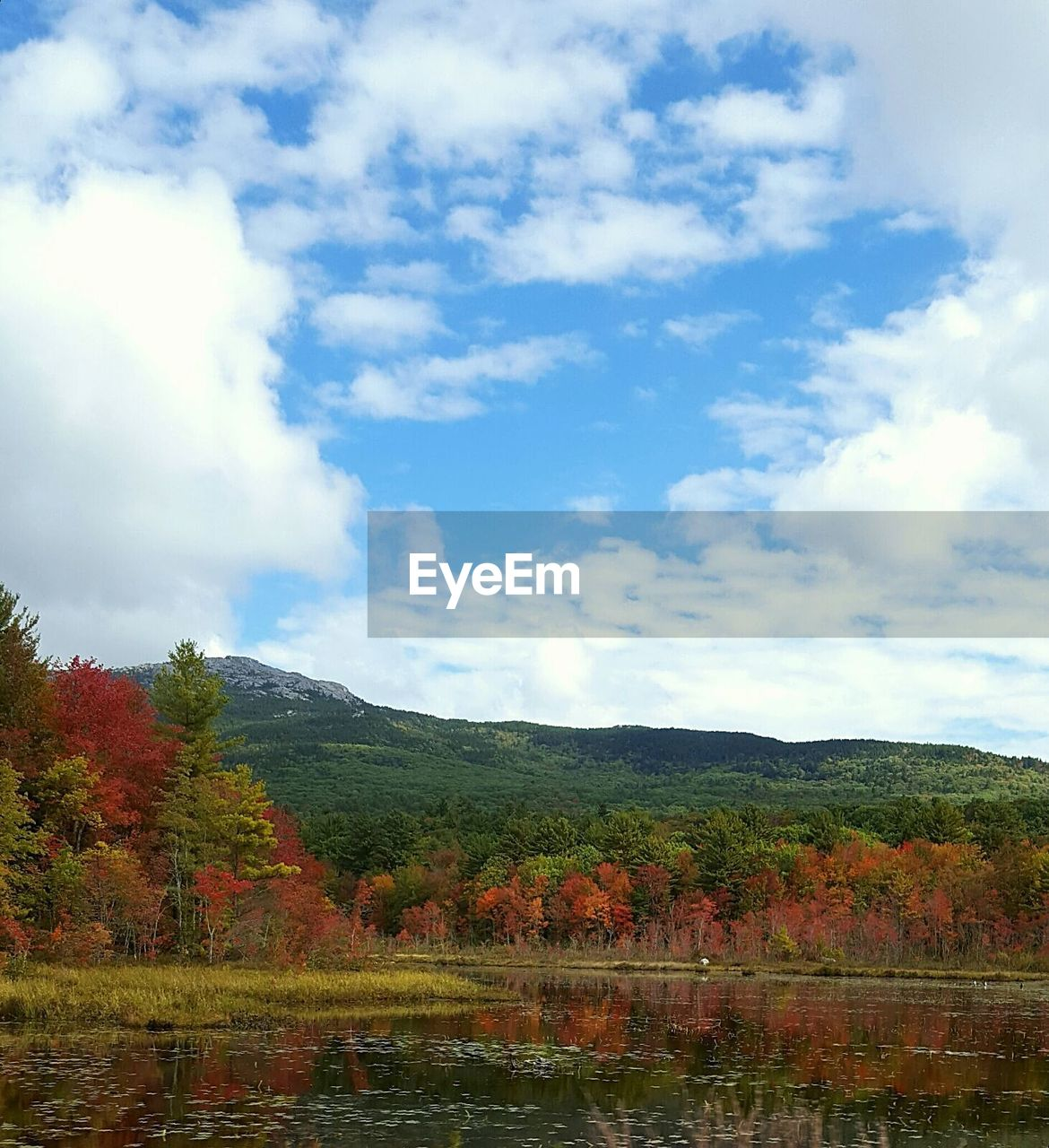 sky, cloud - sky, mountain, tranquility, beauty in nature, scenics - nature, water, tranquil scene, lake, plant, tree, nature, day, environment, no people, landscape, non-urban scene, growth, autumn, outdoors, change