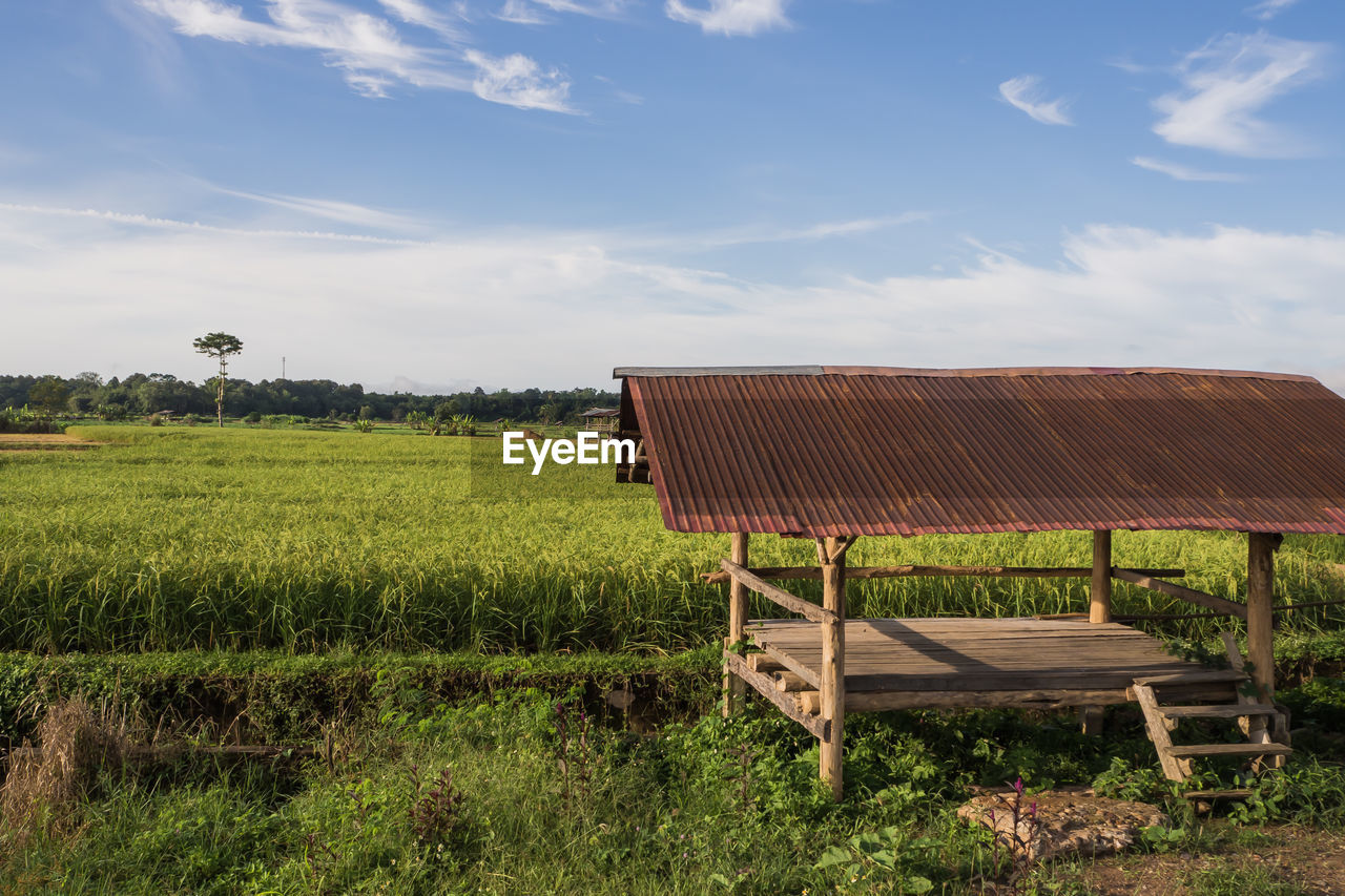 sky, land, plant, environment, field, cloud - sky, landscape, nature, grass, architecture, built structure, day, rural scene, green color, no people, building exterior, beauty in nature, sunlight, scenics - nature, outdoors
