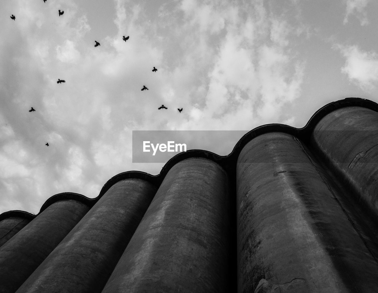 Low angle view of birds flying over silos against cloudy sky