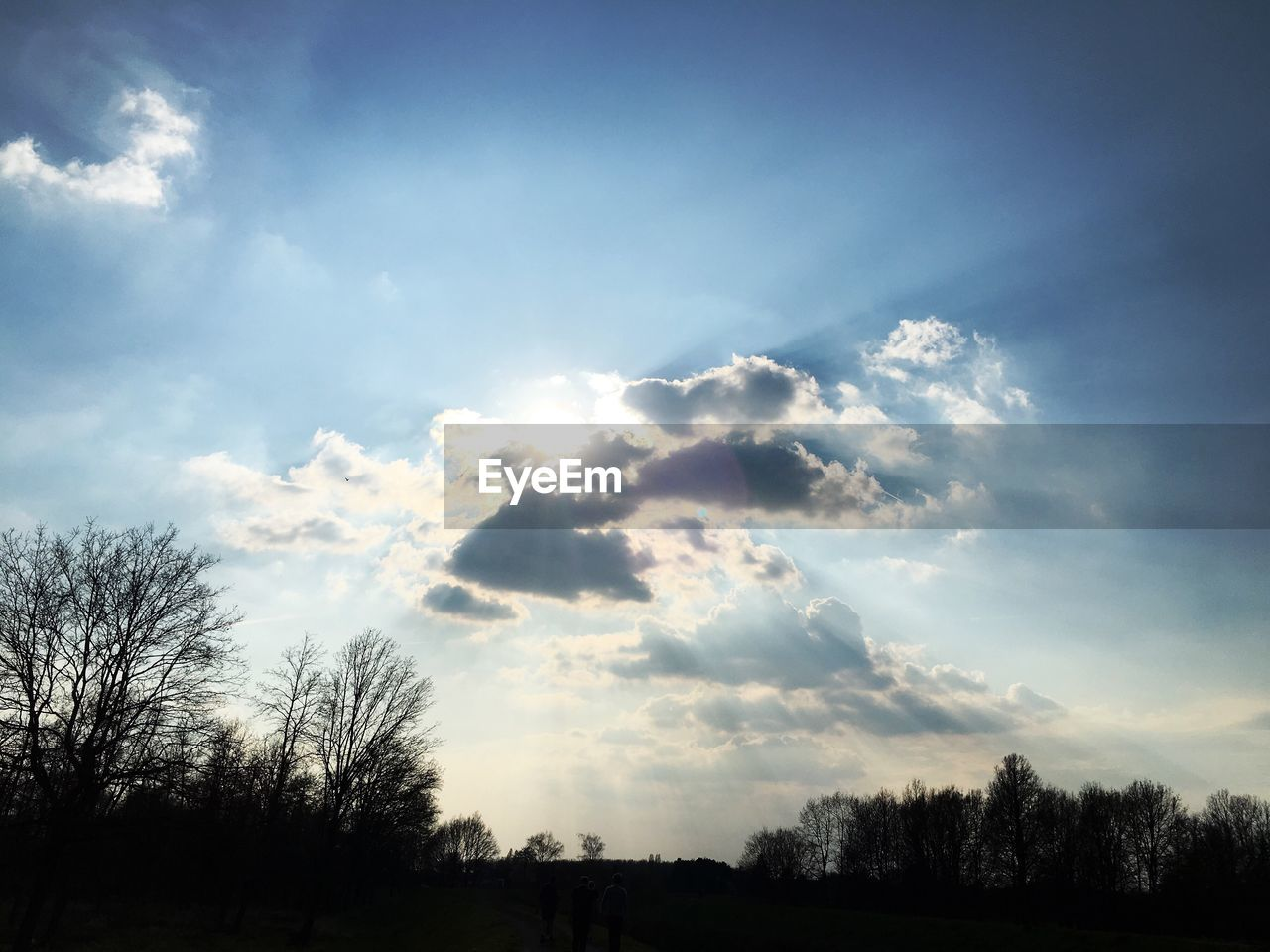 sky, cloud - sky, tree, beauty in nature, plant, tranquility, scenics - nature, silhouette, tranquil scene, no people, nature, non-urban scene, sunlight, low angle view, outdoors, bare tree, landscape, environment, day, land, wispy