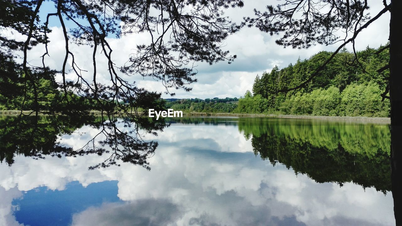 reflection, tree, sky, nature, cloud - sky, beauty in nature, tranquil scene, water, scenics, tranquility, lake, day, no people, outdoors, waterfront, symmetry, growth, branch