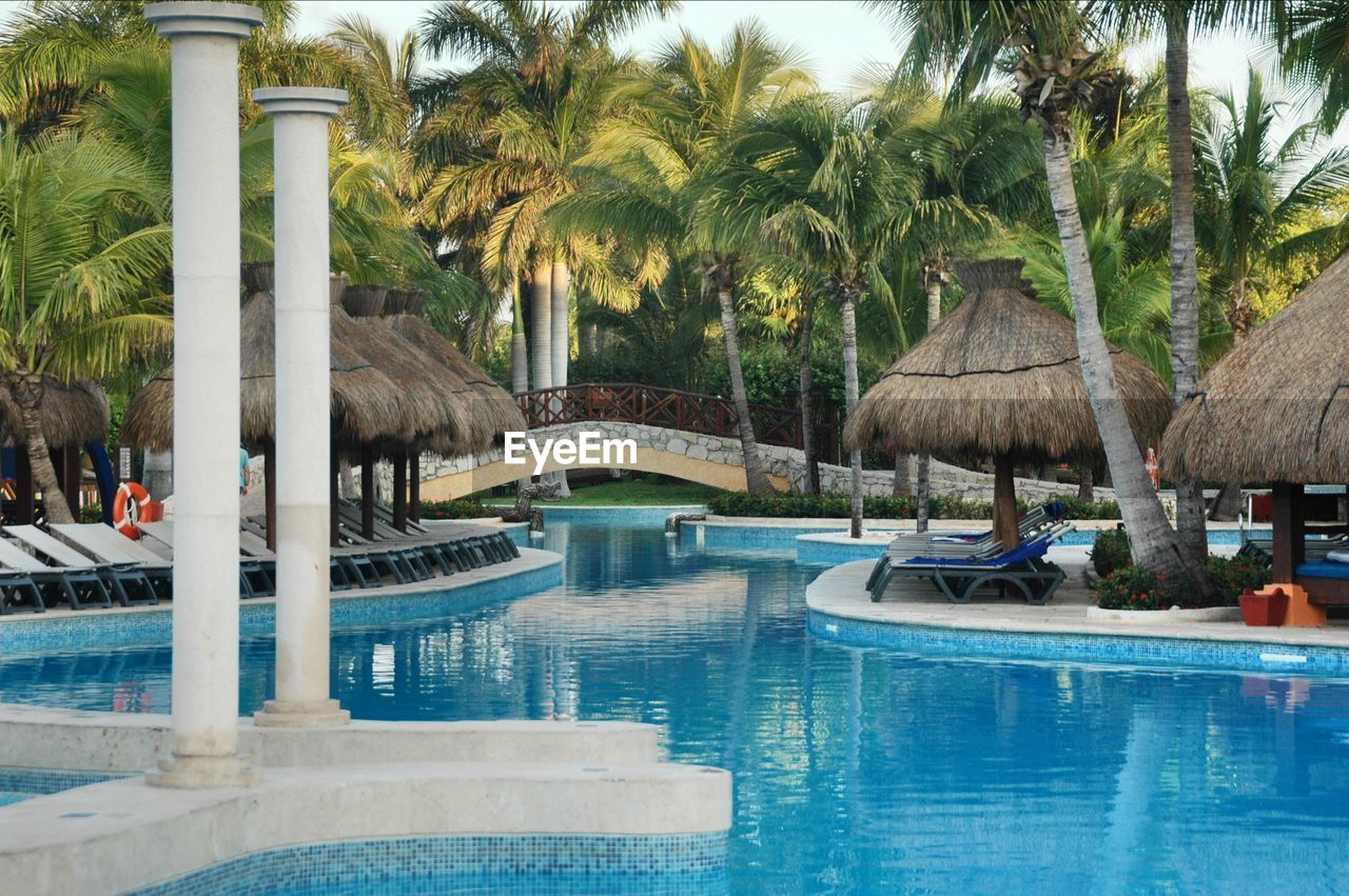 water, swimming pool, palm tree, tree, outdoors, day, vacations, no people, nature, sky