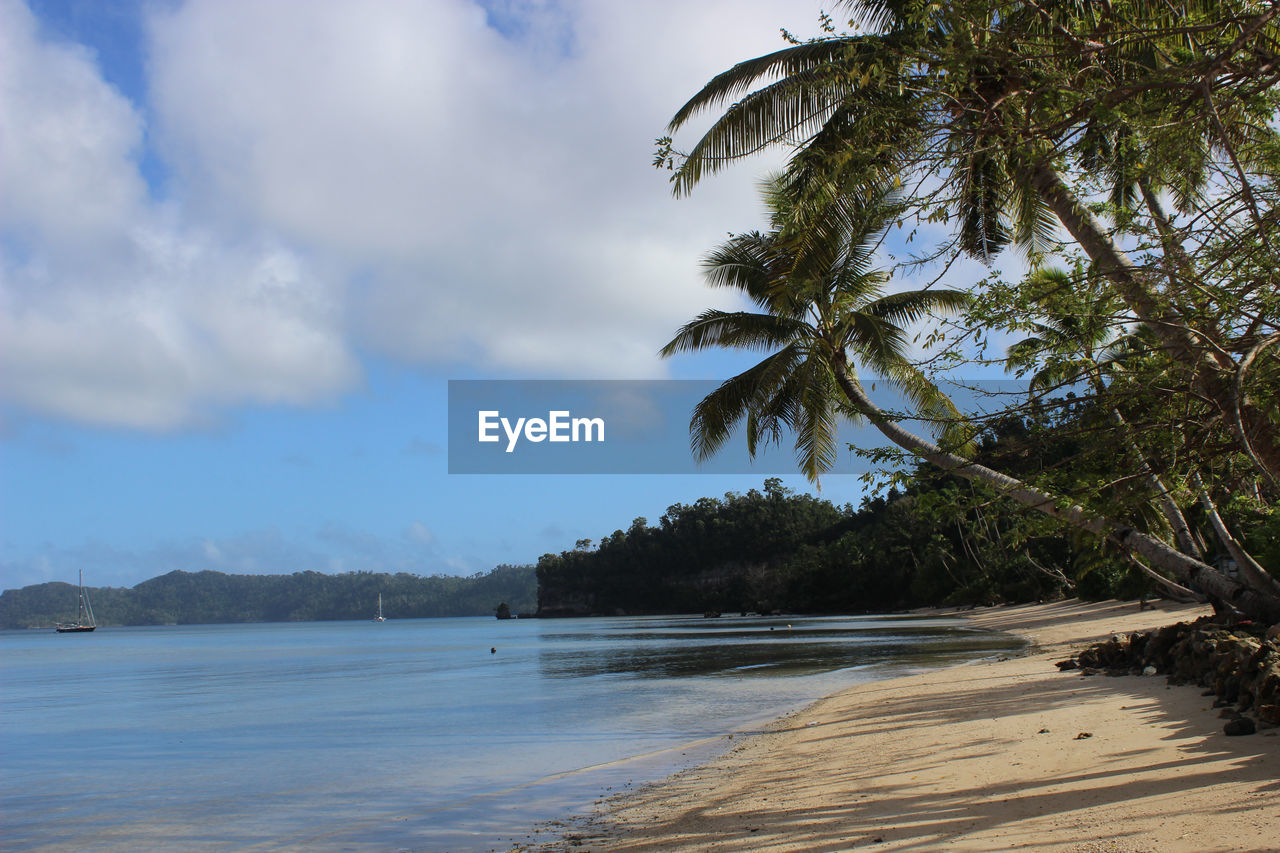 beach, sky, sea, palm tree, nature, tree, no people, outdoors, beauty in nature, tranquility, sand, scenics, water, cloud - sky, day