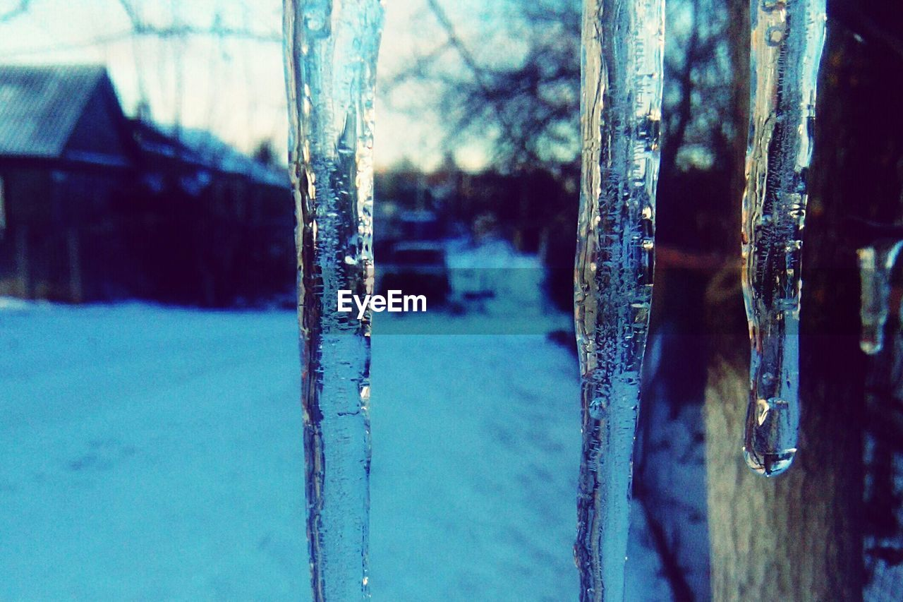 cold temperature, winter, snow, frozen, ice, icicle, weather, frost, close-up, nature, cold, no people, day, focus on foreground, outdoors, ice crystal, beauty in nature, water, snowflake, dripping