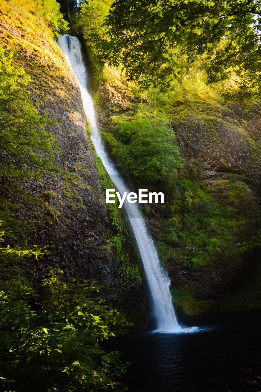waterfall, motion, scenics, long exposure, flowing water, water, blurred motion, nature, beauty in nature, forest, rapid, no people, outdoors, tranquil scene, tree, purity, power in nature, day, freshness