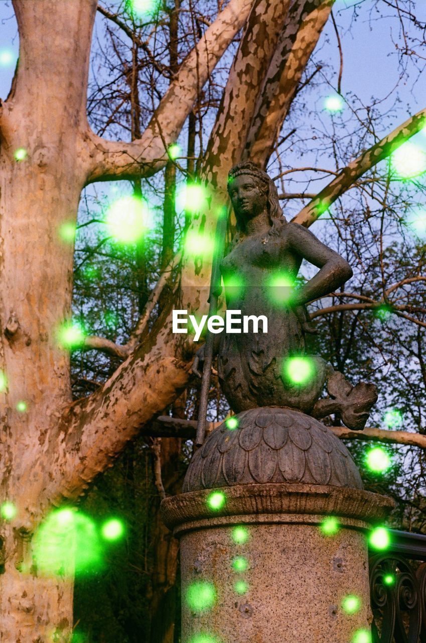 tree, green color, no people, plant, illuminated, nature, low angle view, animal themes, animal, animals in the wild, day, tree trunk, animal wildlife, branch, trunk, one animal, close-up, outdoors, lighting equipment, decoration
