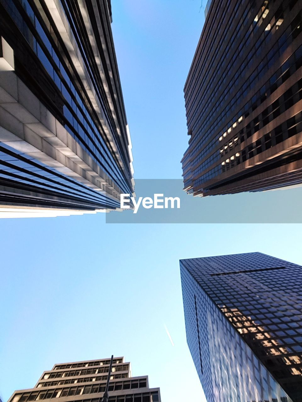 architecture, building exterior, sky, built structure, low angle view, city, building, clear sky, office building exterior, tall - high, nature, office, skyscraper, modern, no people, day, sunlight, tower, directly below, outdoors, financial district