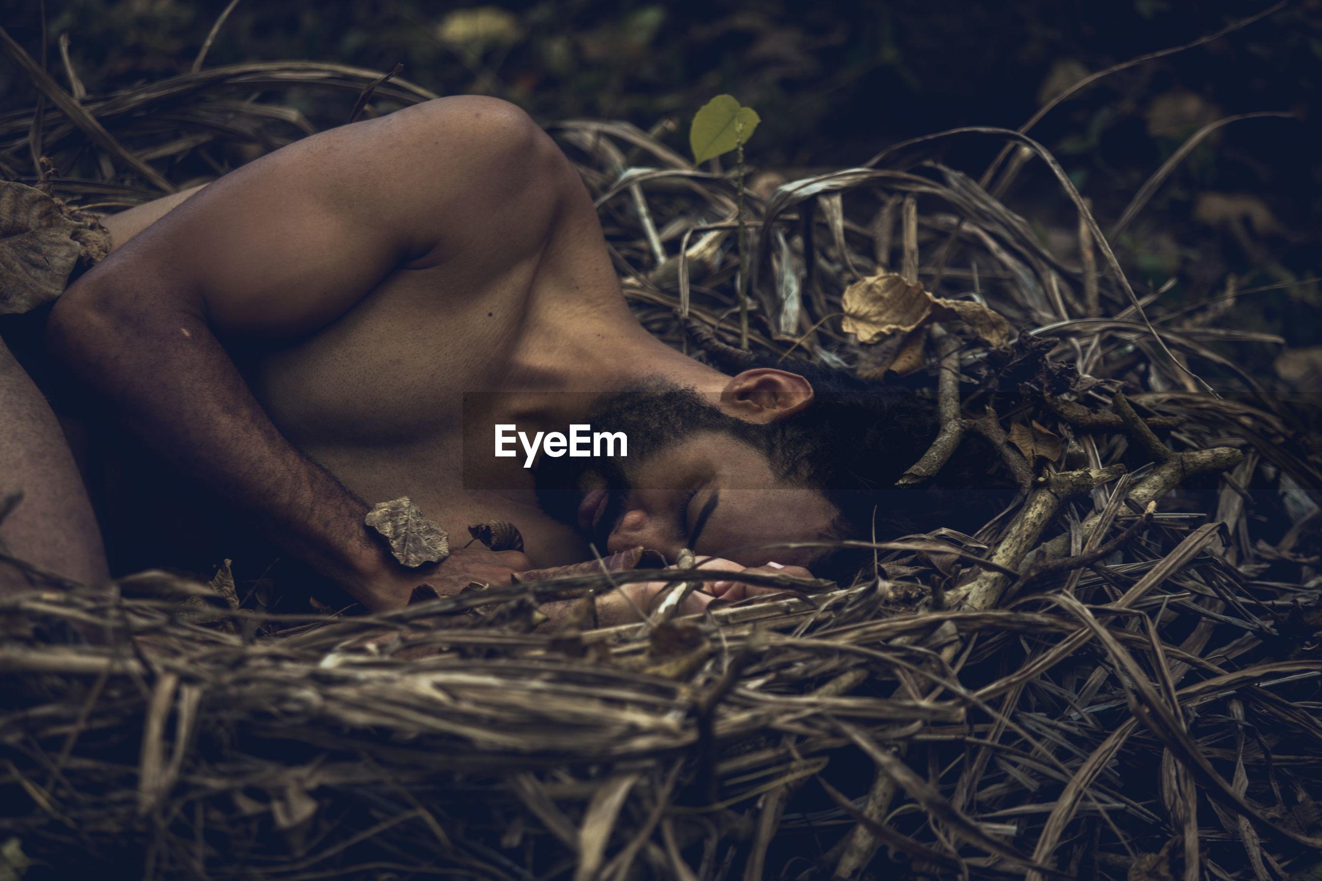 Close-up of man sleeping in bird nest
