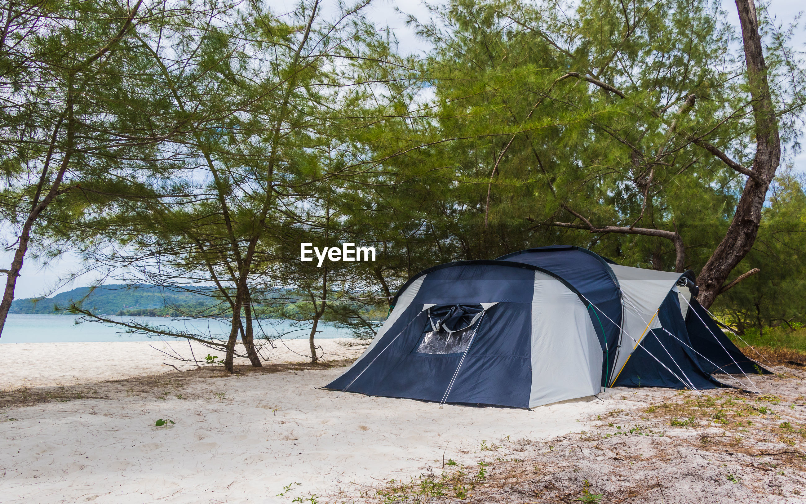 TENT ON FIELD AGAINST TREES AT BEACH