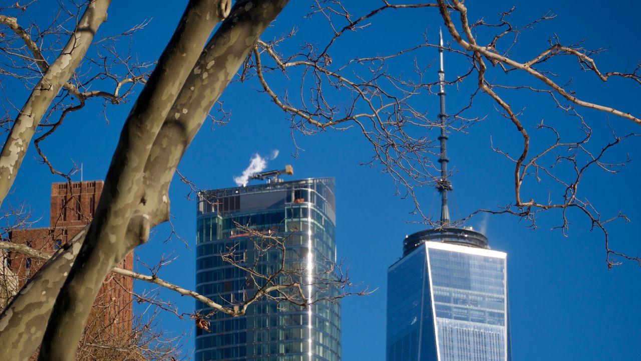 tree, architecture, built structure, sky, building exterior, branch, nature, office building exterior, no people, plant, building, bare tree, blue, day, low angle view, city, outdoors, sunlight, skyscraper, tower, modern