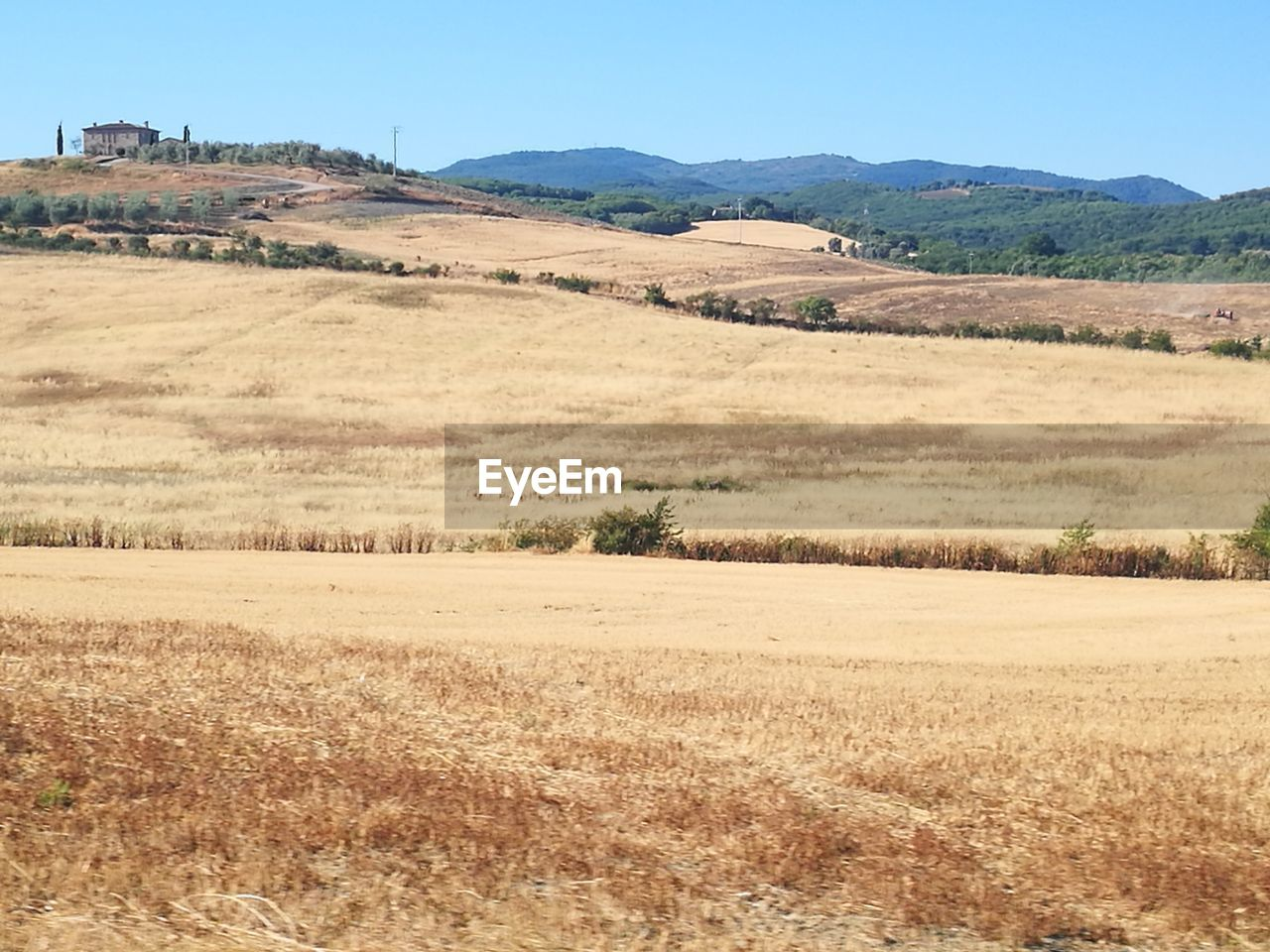 landscape, field, nature, clear sky, no people, tranquil scene, growth, outdoors, day, mountain, beauty in nature, sky