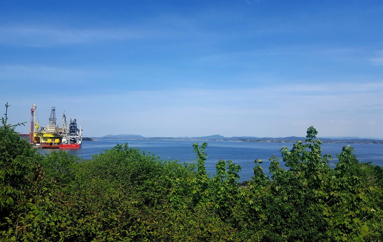 water, plant, sky, tree, sea, nature, scenics - nature, nautical vessel, beauty in nature, day, cloud - sky, tranquil scene, no people, growth, blue, tranquility, transportation, green color, mode of transportation, outdoors, sailboat, bay, luxury