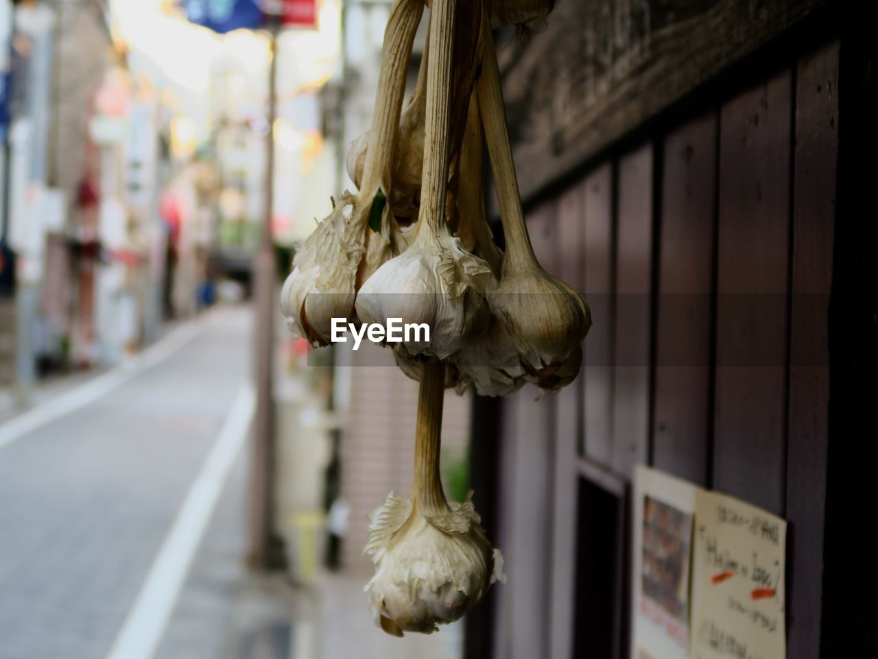 focus on foreground, no people, art and craft, hanging, day, representation, close-up, retail, creativity, animal, for sale, animal representation, outdoors, market, architecture, metal, body part, bone, food