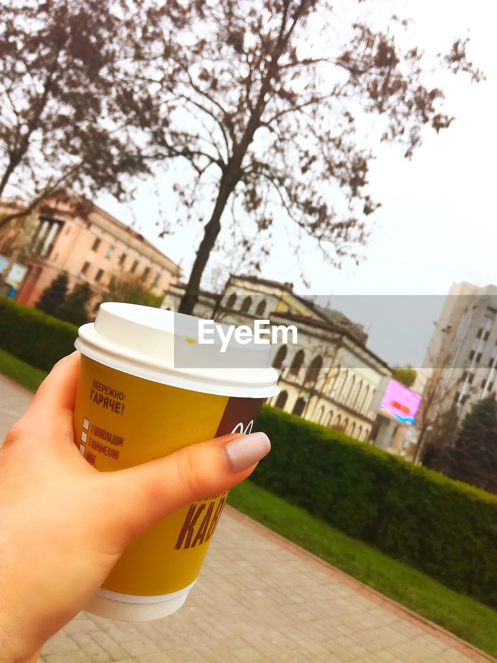 human hand, human body part, building exterior, architecture, built structure, real people, holding, one person, tree, personal perspective, focus on foreground, outdoors, coffee cup, coffee - drink, drink, close-up, disposable cup, sky, day, freshness, city, beauty in nature