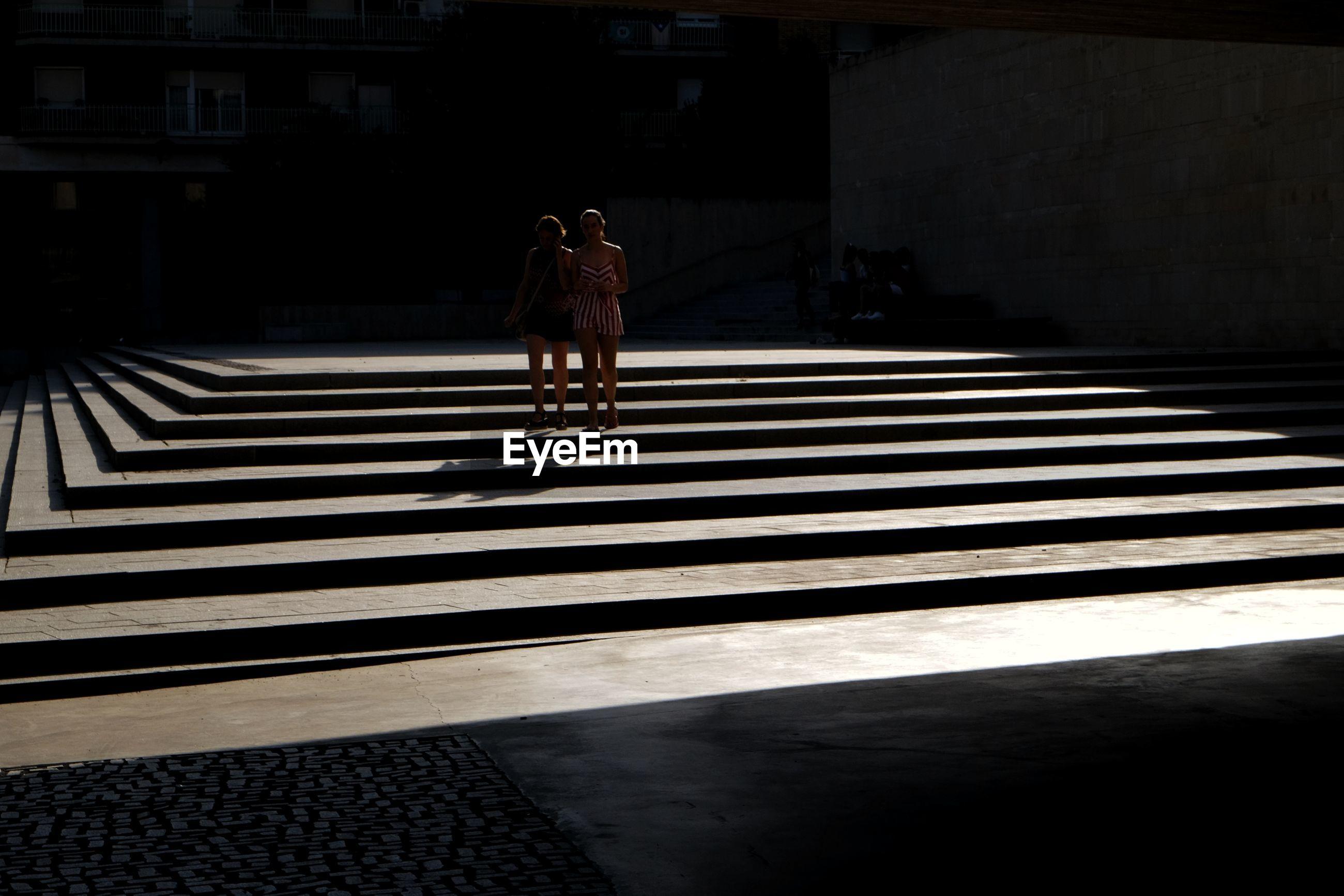 FULL LENGTH REAR VIEW OF CAT WALKING ON ZEBRA CROSSING