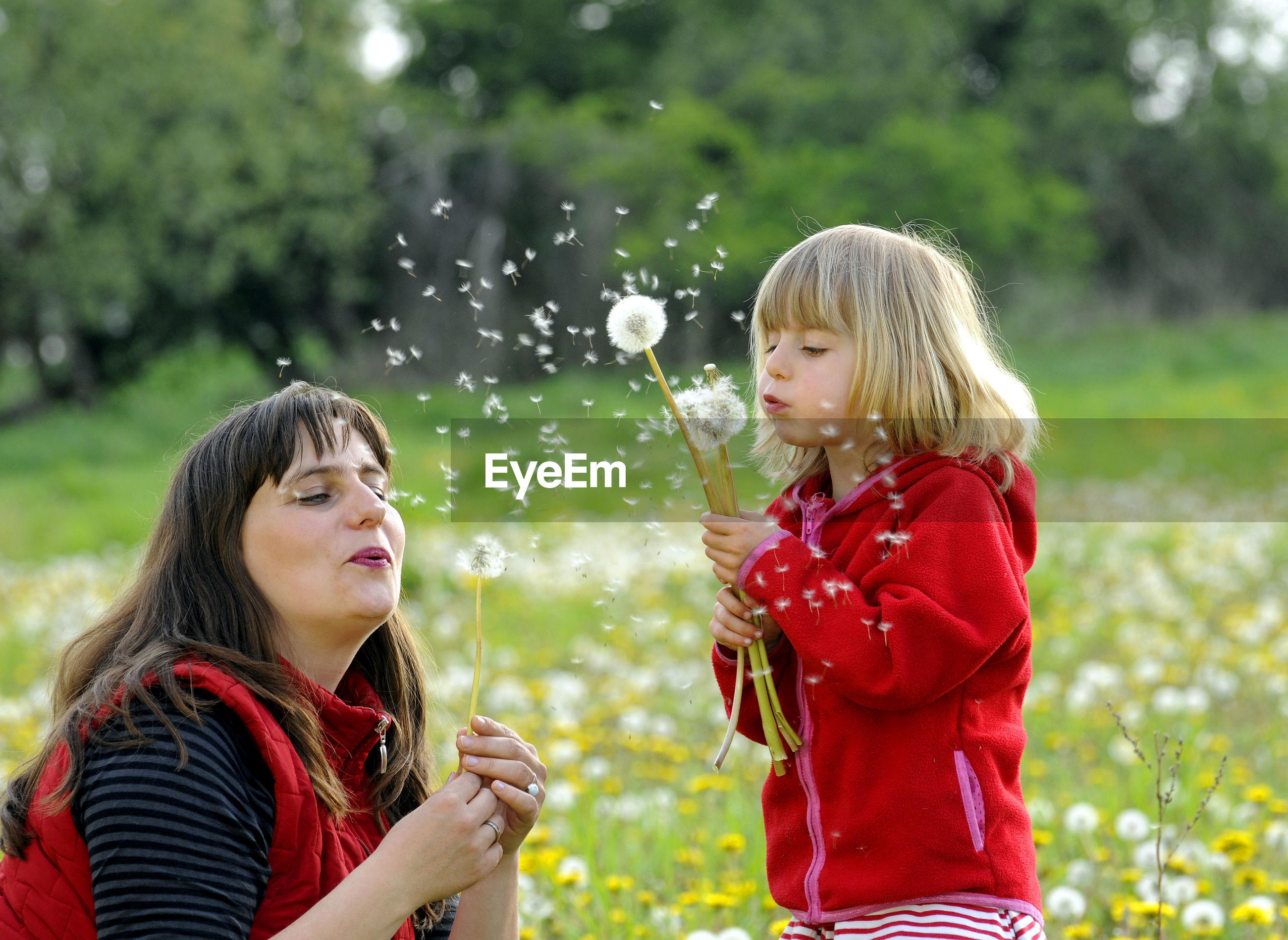 Mother and daughter playing with dandelions at park