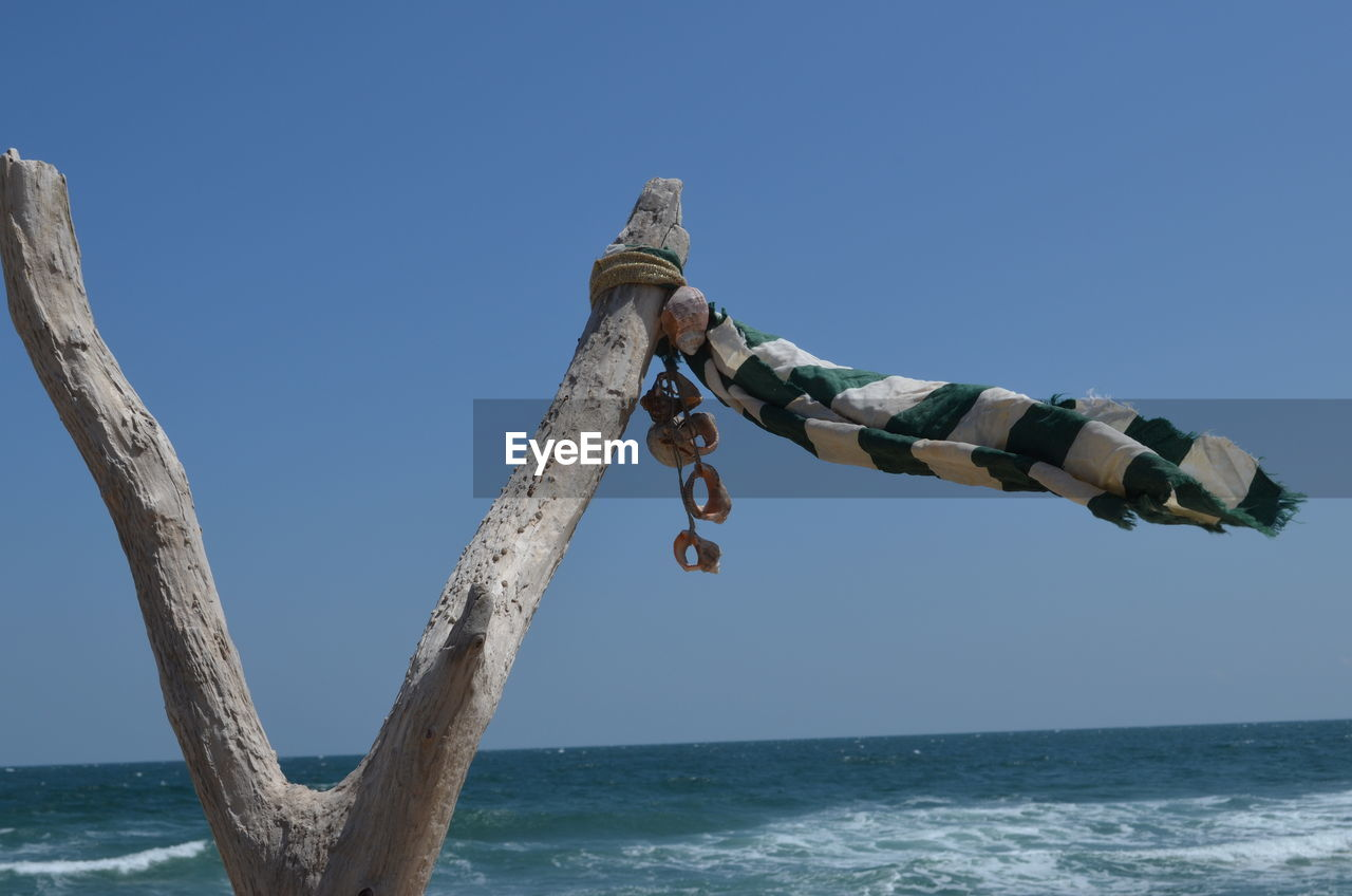 water, sea, sky, nature, horizon over water, horizon, clear sky, day, scenics - nature, blue, beauty in nature, no people, tranquility, outdoors, wood - material, land, beach, tree, tranquil scene