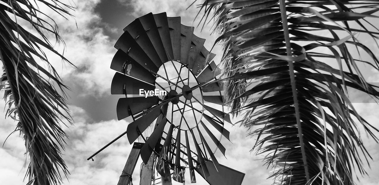 turbine, palm tree, nature, day, environmental conservation, sky, wind turbine, renewable energy, fuel and power generation, no people, alternative energy, tropical climate, tree, low angle view, wind power, environment, plant, outdoors, technology, palm leaf
