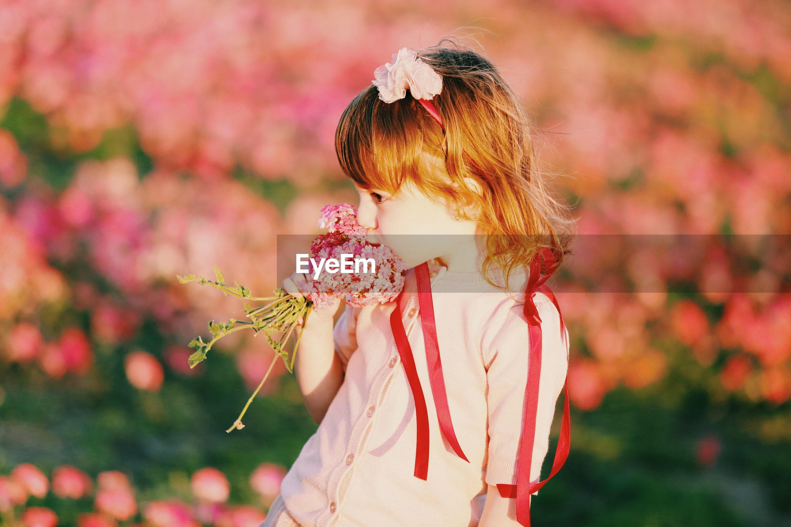 Cute girl smelling pink flowers while standing on land