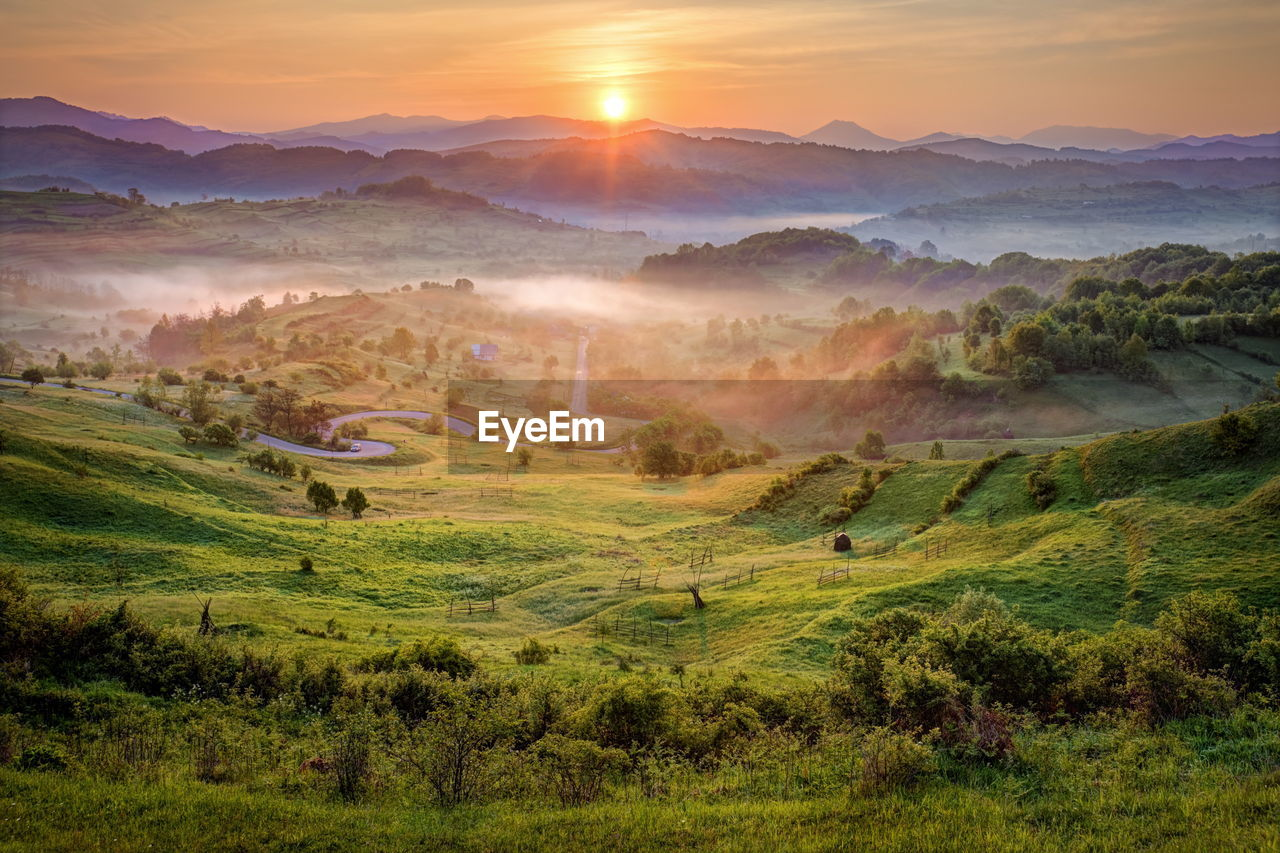 Scenic view of green landscape during sunset